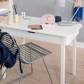 Sebra Desk