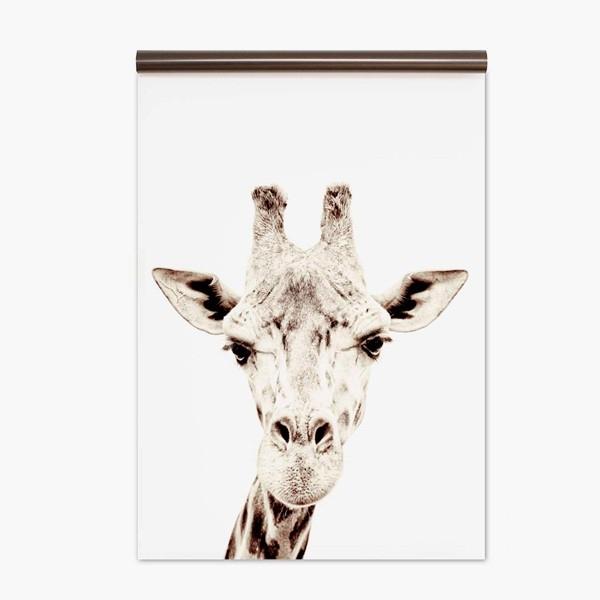 Papel Pintado magnético Giraffe