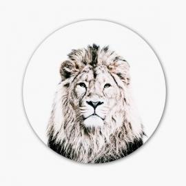 Vinilo magnético Lion