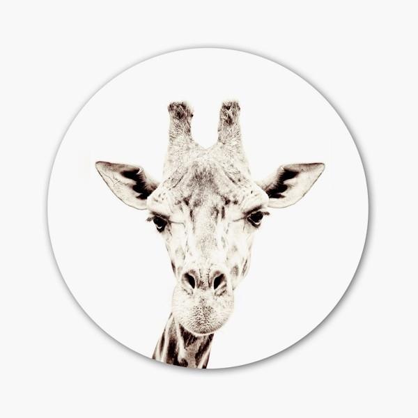 Vinilo magnético Giraffe
