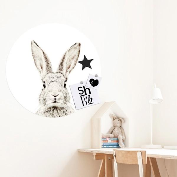 Vinilo magnético Rabbit