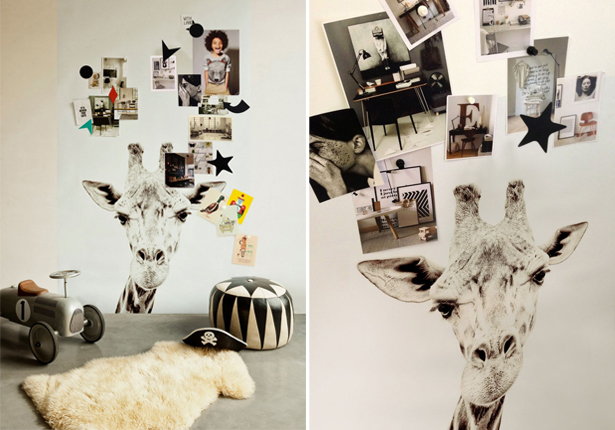 groovy-magnets-girafa
